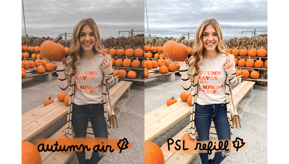 99021 digital presets for photos fall slider 01 original