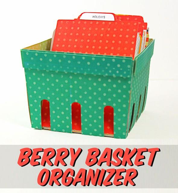 Berrybasketorganizer