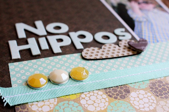 4   no hippos   detail   susan weinroth
