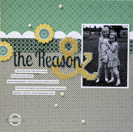 Thereason sc0812