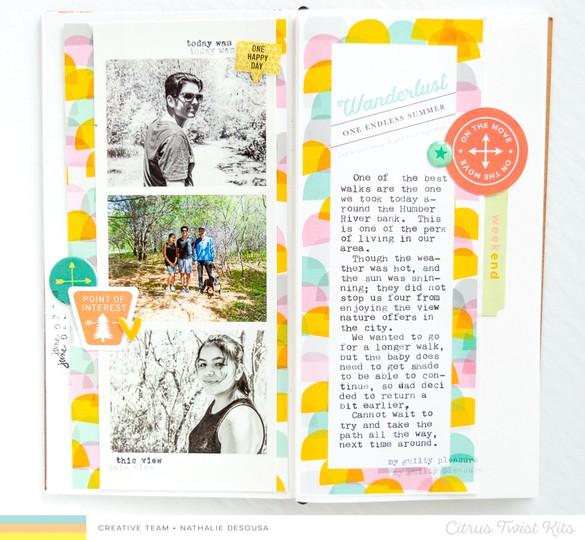 Ctk my personal journal 3x8 cards nathalie desousa 3 original