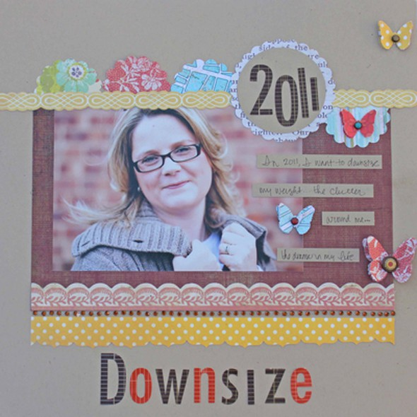 Downsize1 resized