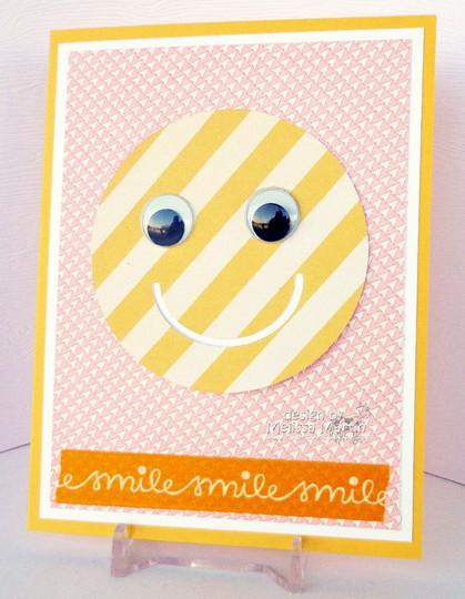 Hycct1302 msm's smile dsc00681